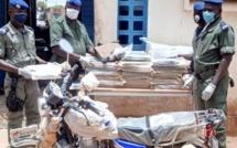 Kidira: 110 kg de chanvre indien saisis par la Brigade territoriale