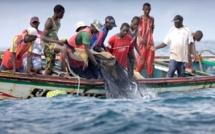La pêche artisanale souffle : 150 millions de FCFA en équipement