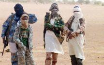Mali : zones d'ombre sur la mort des prédicateurs mauritaniens à Diabali