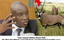 Tout comme Abdou Karim Sall, Aly Ngouille Ndiaye s'est fait livrer secrètement 6 gazelles oryx...
