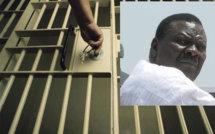 AUDIO – Cheikh Bethio à Rebeuss : Amadou Ndiogou de l'ODH, « …c'est une erreur qu'un étudiant de 2ème de la Fac de droit ne pourrait commettre … »