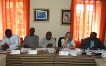 Présidentielle et législatives 2012 : les observateurs des élections capitalisent leurs activités