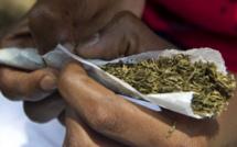 Trafic de drogue : trois (3) individus dont deux (2) vieux âgés de 65 ans et 70 ans, arrêtés