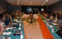 Sécurité et bonne gouvernance en Afrique de l'Ouest : « Seuls le Sénégal et le Cap-Vert échappent à cette fragilité étatique »