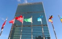 La Palestine va devenir un état observateur à l'ONU
