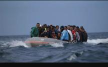 Émigration clandestine : un faussaire faisant voyager des candidats en falsifiant des licences du Cng arrêté