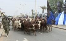 Magal Touba 2013 : Cheikh Béthio demande à ses talibés de le préparer comme il se doit