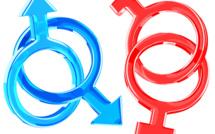 Cameroun : Condamnés pour leur homosexualité, Franky et Jonas retrouvent la liberté en appel