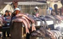 Marché au poisson de Pikine: les pensionnaires réclament un audit de la gestion du Directeur général