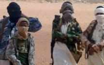 Deux jeunes portant des ceintures d'explosifs arrêtés à Gao