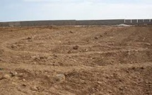 Micmac autour de 20 000 hectares de terres... le documentaire choc