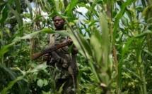 RDC: les rebelles maï-maï menacent le découpage du Katanga