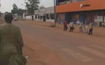 Centrafrique: 250 sénégalais veulent retrouver la «Téranga»