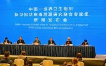 Chine: l'animal à l'origine de la pandémie la COVID19 pas encore identifié par les experts de l'OMS