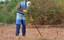 Sénégal: seule la paix permettra de parachever le déminage en Casamance