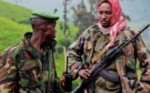 Le Nord-Kivu demande que le Rwanda et l'Ouganda ouvrent des négociations avec leurs rébellions