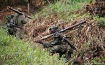 RDC: une attaque présumée des Forces démocratiques alliées fait 13 morts