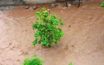 Hivernage 2013: Fatick fin prêt à faire face aux inondations