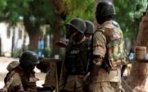 Mali: le Nigeria annonce le retrait d'une partie de ses troupes