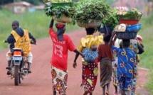 RCA: les Mbororo, stigmatisés, se disent eux aussi victimes