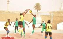 Volleyball-Arbitrage: 17 candidats en lice à Dakar