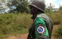 Centrafrique: l'Afrique centrale augmente son investissement dans la Misca