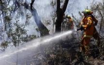 Incendies en Australie: la journée de tous les dangers