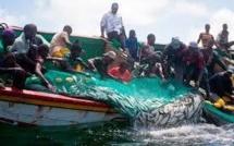 Pêche illégale : «Le Sénégal perd près de 145 milliards de FCFA par an », selon une chercheuse canadienne