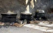 6 300 Sénégalais meurent chaque année pour défaut de services de cuisson