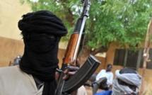 Pour le Pentagone, le Sahel est devenu un «incubateur» jihadiste