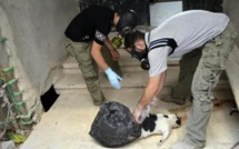 Armes chimiques: la Syrie prend du retard dans la destruction de son arsenal