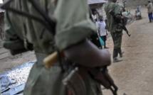 Après avoir annoncé la fin des hostilités, les FDLR peinent à convaincre