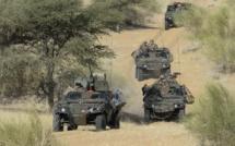 Mali: une trentaine de jihadistes tués par l'armée française en avril