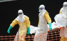 La cartographie de l'épidémie d'Ebola est en ligne