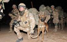 Royaume-Uni: des photos d'Afghanistan entachent l'armée de sa majesté
