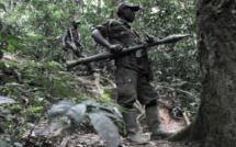 RDC : l'armée ouvre une enquête