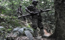 Tanzanie: débat sur l'implication du Rwanda en RDC