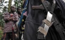 RDC: début de démobilisation des rebelles hutus rwandais