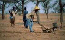 Amnesty dénonce la politique menée dans les zones rurales