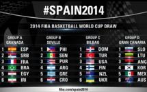 Coupe du Monde Basket 2014- Groupe B: Le Menu des « Lions »