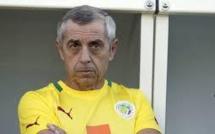 Sénégal-Tunisie-Alain Giresse : «Nous sommes désolés pour les blessés mais…»