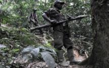 RDC: reddition des FDLR, trois mois après, aucun progrès