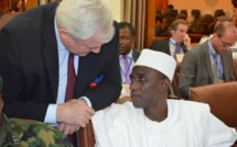 Niger: une force mixte multinationale pour lutter contre Boko Haram