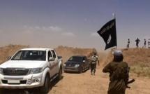 Syrie: le groupe EI repoussé de la cité de Palmyre