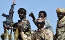 Boko Haram : les soldats nigérians victorieux saluent leurs frères camerounais et tchadiens