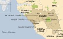 Guinée : électeurs sans carte d'électeur