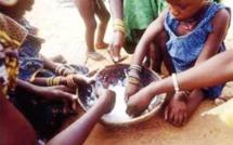 Pauvreté et insécurité alimentaire au Sénégal: 30% des ménages en milieu rural touchés