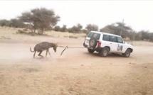 MALI : Cette image « assassin » de l'ONU en Afrique